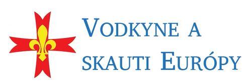 Logo FSE - Adam Zilinek